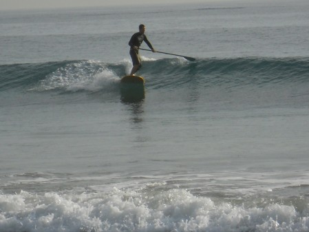Surfing in January