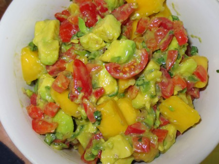 Avocado Dishes 024