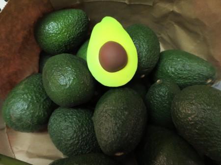 Avocados 009