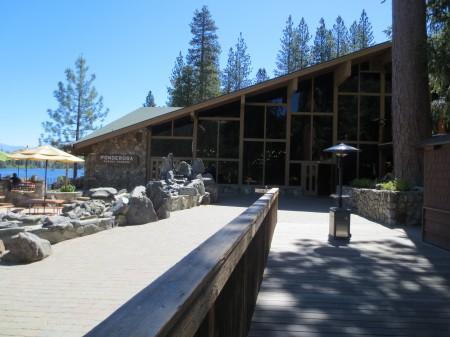 Sequoia 019