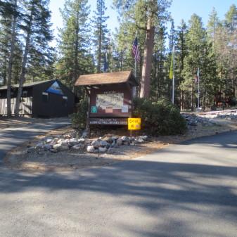 Camp Info